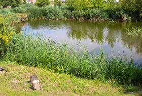 Nagy családok és baráti társaságok ideális nyaralóhelye Poroszlón