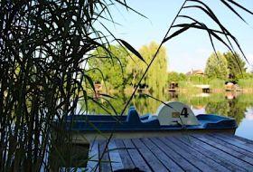 Kiadó vízibiciklis nyaraló a Körös partján