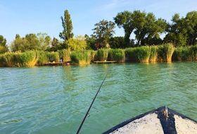 Közvetlen Balaton-parti 6 fős nyaraló 2 nagy stéggel 2 csónakkal